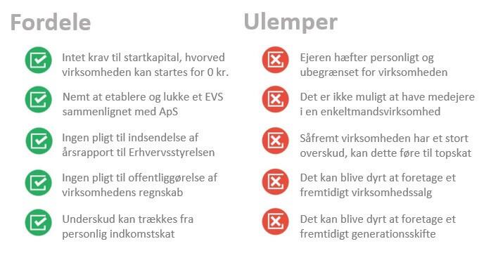 Fordele og ulemper ved enkeltmandsvirksomheder (EVS)